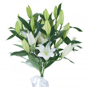 Bouquet of 5 lilies